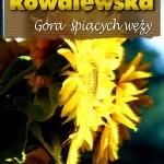 O-Gora-Słonecznik2