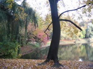 park skaryszewski 013